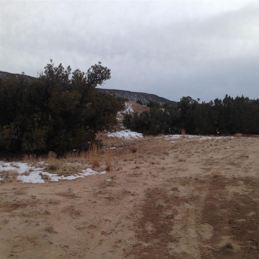 Lot 8 Cedar Ridge Ojo Caliente, NM 87549